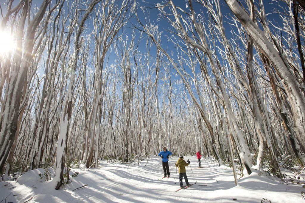 ski en australie