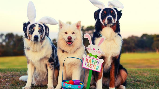 Pâques en Australie